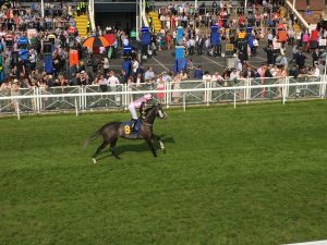horse racing chester